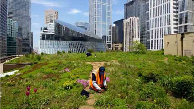 Green infrastructure the hot topic amongst city planners