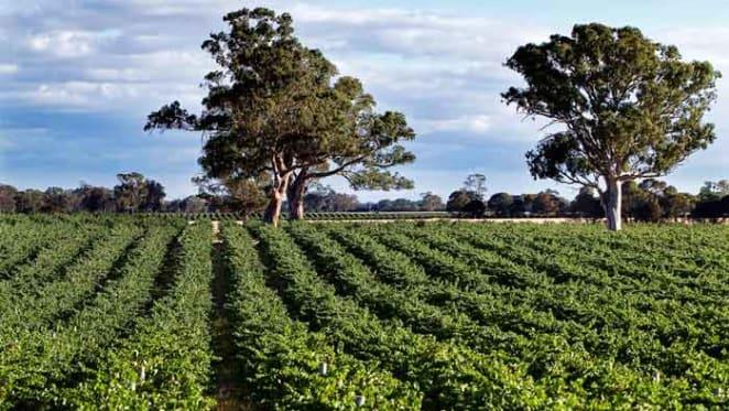 South Australia's Gum Park Vineyard listed