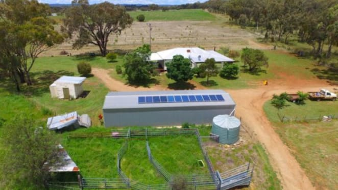 Beef and lamb prices nourishing Northern Tablelands rural prices: NSW Valuer-General
