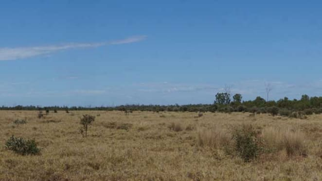 Peabody Energy lists three central Queensland cattle stations