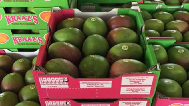 Bowen Big Mango district farm up for sale