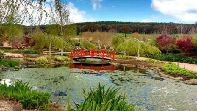 Garrick Hawkins might close Mayfield Garden, Oberon over quarry expansion