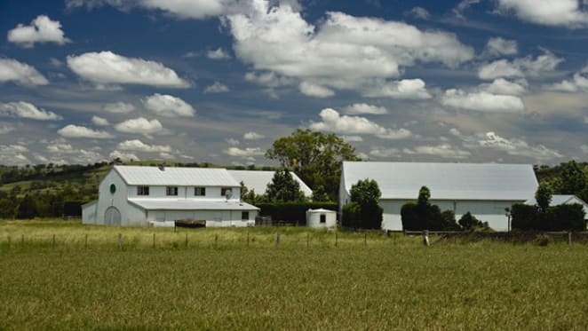 Rich Rock, Merriwa listed with $14 million hopes