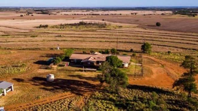 Listings increase post winter plantings in Darling Downs: HTW