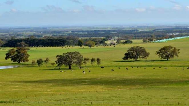 Barwon Heights farm sells for $10 million plus