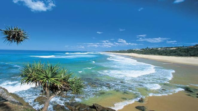 Sunshine Coast sales volumes stable: Herron Todd White
