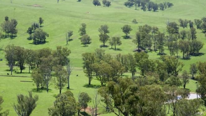 NSW Central Tablelands rural buyers seeking proximity to regional centres: HTW