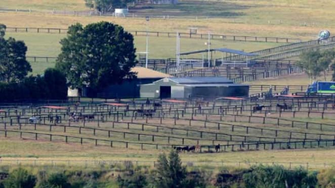Tinkler's Hunter Valley horse stud listed