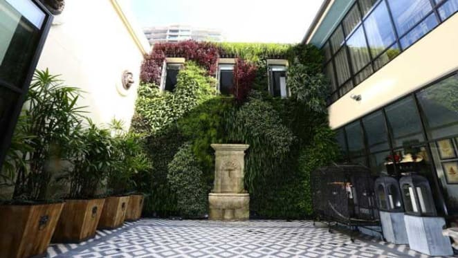 Record terrace price sales in Potts Point and Alexandria