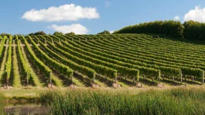 Mornington Peninsula vineyard sale to Chinese buyers