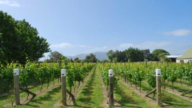 McLaren Vale vineyards sold for $10 million