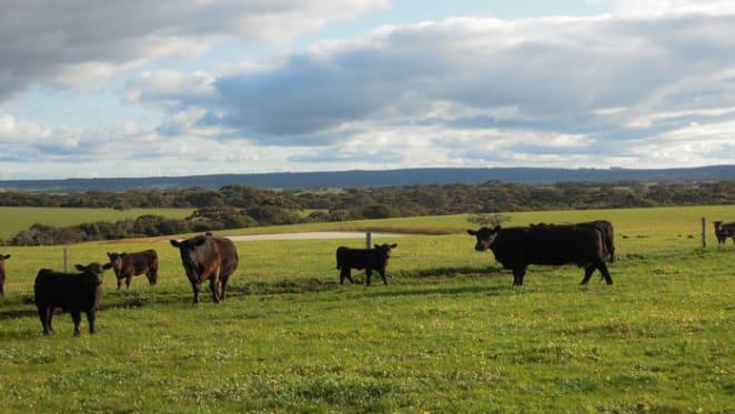 Media mogul Kerry Stokes lists Kangaroo Island farm portfolio