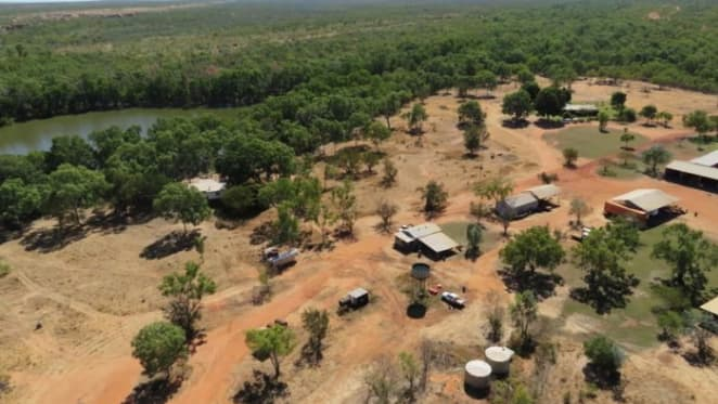 Peter Sherwin returns to cattle with Lost City, Broadmere acquisition