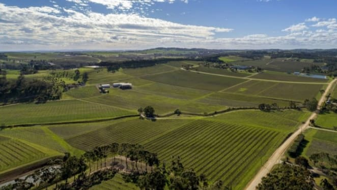 Colliers International to sell Barossa Valley viticulture enterprise