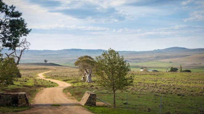 Curry Flat, historic Monaro NSW grazing property sells for $4.63 million