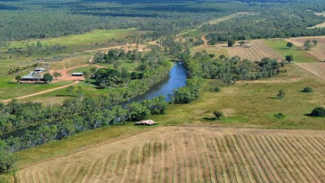Northern Territory rural market on a positive note: HTW