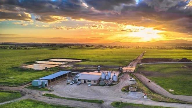 Labertouche dairy cow farm sale at $6,650,000