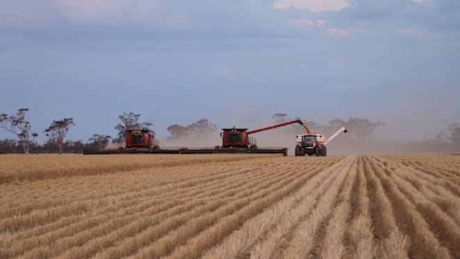 Moree cropping enterprise listed for sale