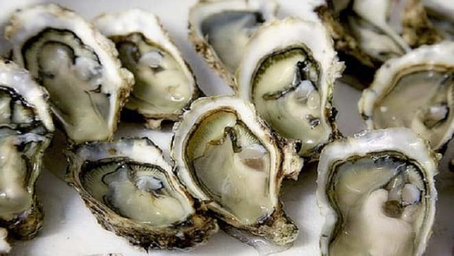 Ah shucks, how bushfires can harm and even kill our delicious oysters