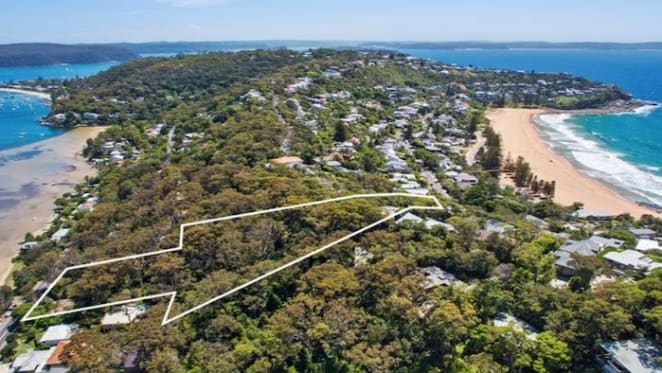 Near three acre compound spread across Palm Beach and Whale Beach for sale