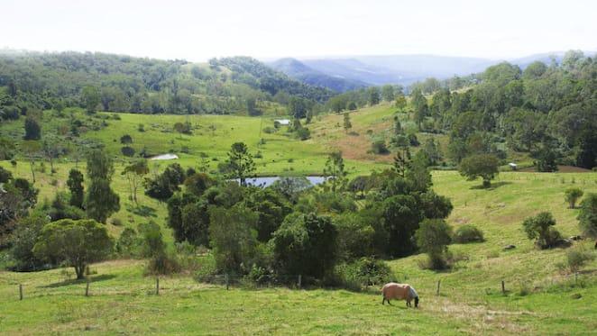 North West Queensland rural market saw spike in drought relief buyers: HTW Rural