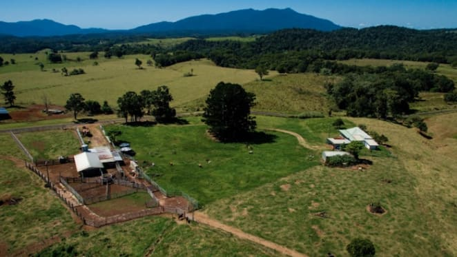 228 ha Malandra district farm offered by mortgagee