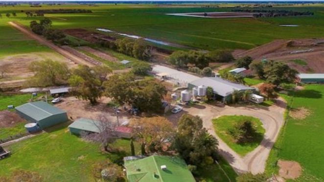 Rural values continue to rise in the Echuca and Deniliquin regions: HTW Rural