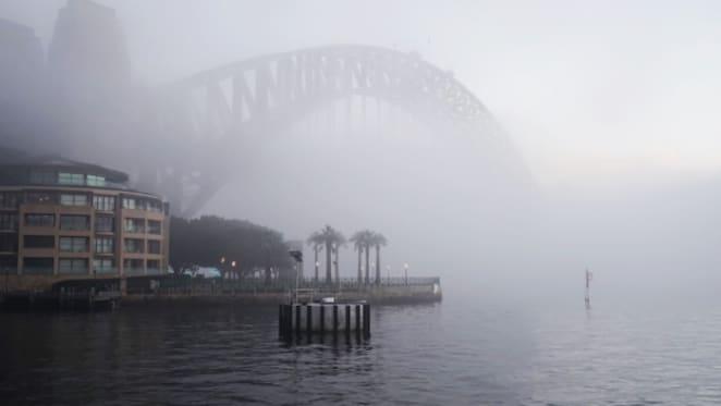 Smoke haze hurts financial markets as well as the environment
