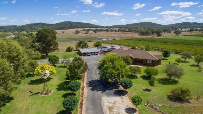 Northnife, Mudgee vineyard remains for sale