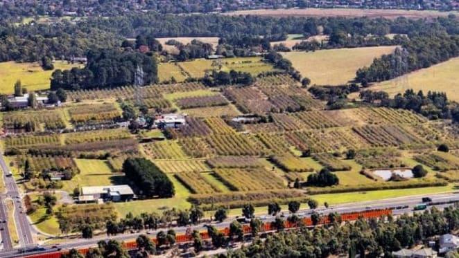 $90 million plus Wantirna South apple orchard holding sold through Savills