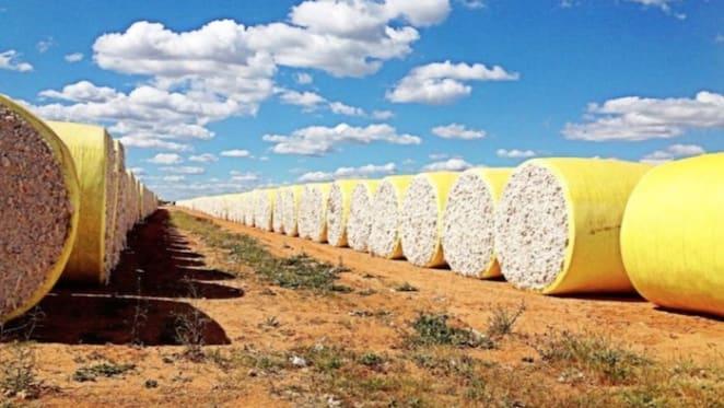 Report recommends big ideas for regional Australia – beyond decentralisation