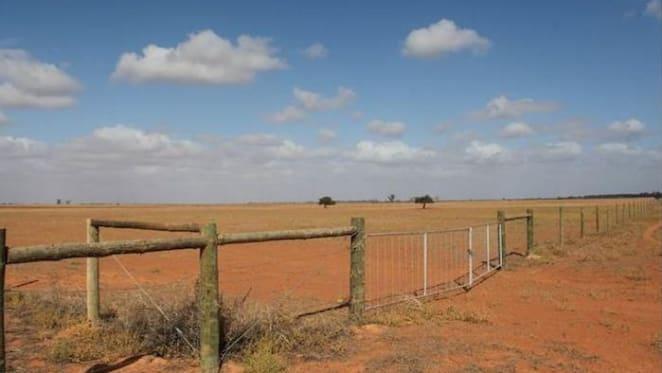 Concerns around the cost of water could reduce buyer demand in Mildura: HTW rural