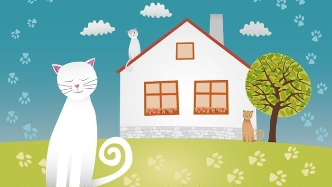 10 reasons landlords should consider allowing tenants to have pets: AVA