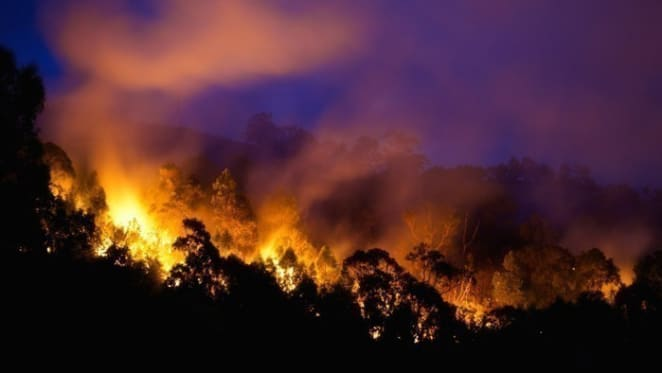12 months since the last bushfire season, don't expect the same this year