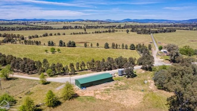 Drought impact on Central and Southern NSW property market has been limited: HTW rural