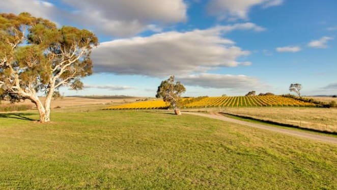 Goulburn winery listed for $2.2 million