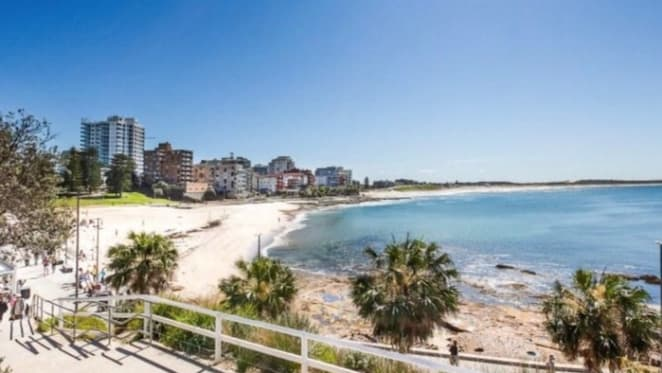 Shire tech head David Greiner secures Cronulla beachfront blocks
