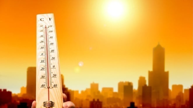 Melbourne and Adelaide have been Australia's most vulnerable major cities to killer heatwaves