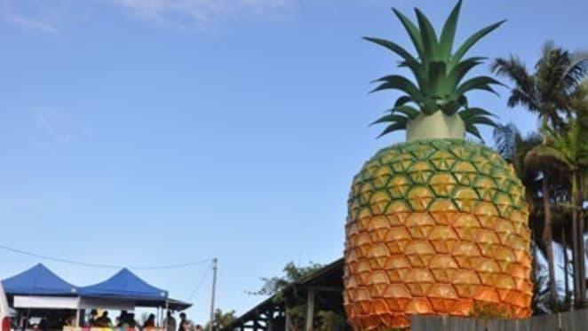 Big Pineapple ploughing begins as plans bear fruit