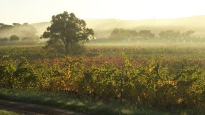 Summer dreaming: 2012 vintage property sales start bearing fruit