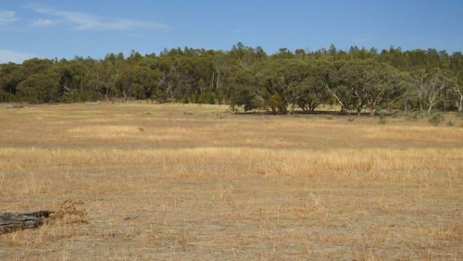 Demand for Central Tablelands rural properties remains strong: HTW rural