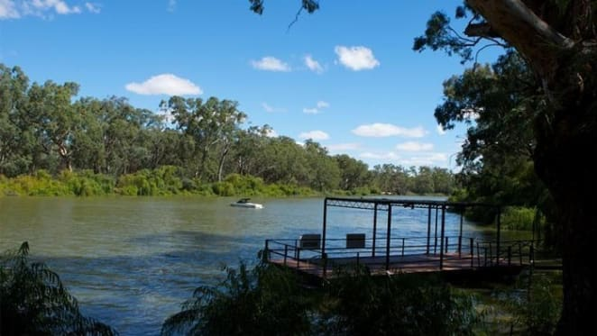 The Murray Darling Basin Plan is starting to deliver environmental improvements