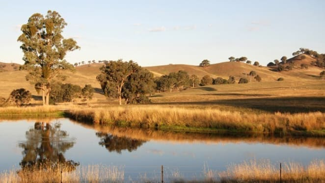 Scott Pape warns about central Victoria land banking paddock speculation