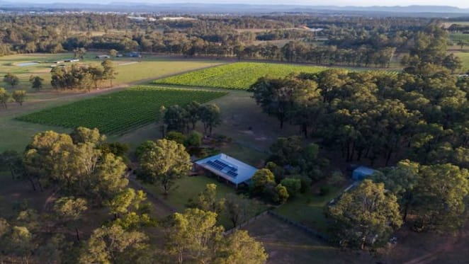 Pokolbin vineyard with renovated home listed for $1.75 million