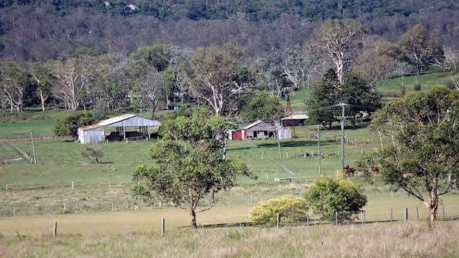 Queensland north and north west markets look towards promising future: HTW rural