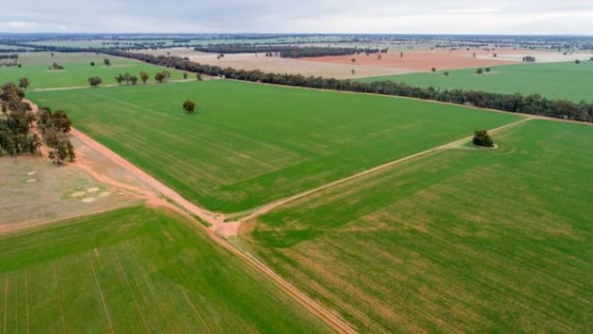 Ongoing drought impacts buyer's decision to pursue rural property in NSW: HTW rural