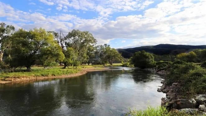 No price growth for Tumut, NSW home sold by mortgagee