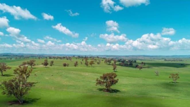 Rural NSW farm Kenda Park sells for $7.1 million under the hammer