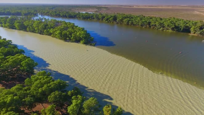 Morrison government plan to scrap water buybacks will hurt taxpayers and the environment