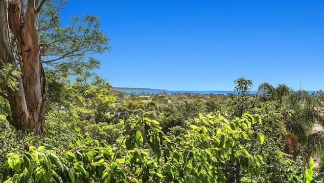 Sydney market strength remains key to Illawarra performance: HTW
